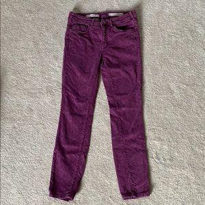 Pilcro Script Fit Jacquard Pants - Size 28